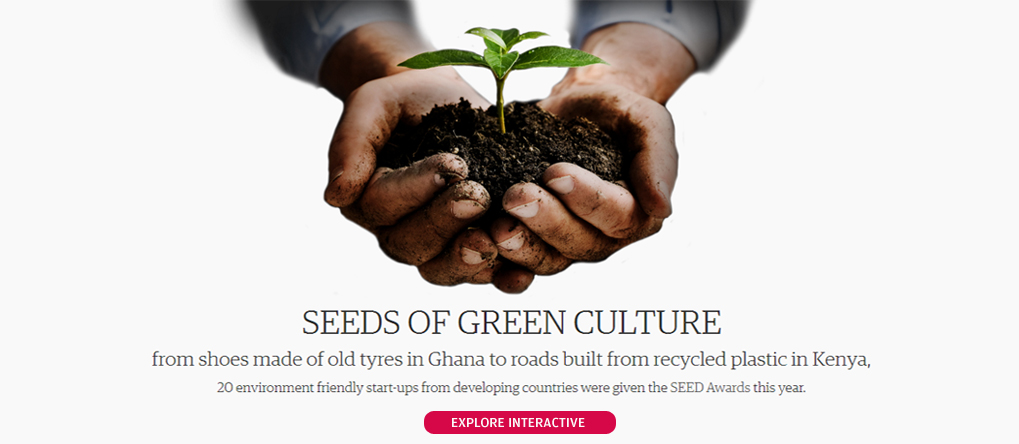 Seeds of green culture
