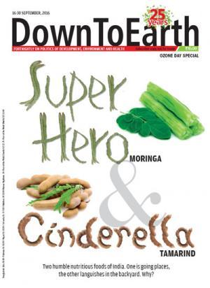 Super Hero Moringa & Cinderella Tamarind
