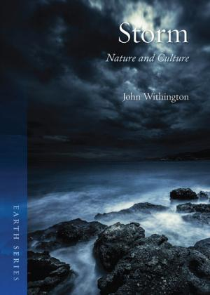 STORM: NATURE AND CULTURE<br>