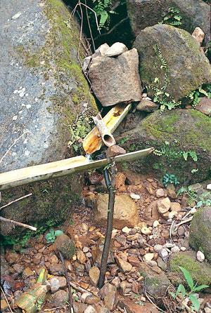 बांस की नालियों से सदानीरा झरनों का पानी नीचे स्थित किसी भी जगह तक ले जाया जाता है (इप्शिता बरुआ / सीएसई)