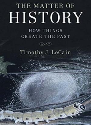 The Matter of History: How Things Create the Past