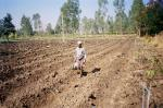 Why Indian farmers need a robust relief and compensation mechanism