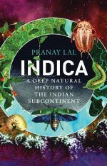 Hidden wonders of India