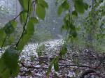 Hailstorm in Maharashtra kills at least three, destroys crops in Marathwada, Vidarbha