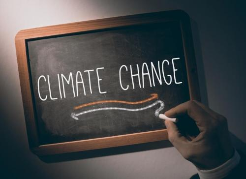 'Climate plans of developing countries far more ambitious'