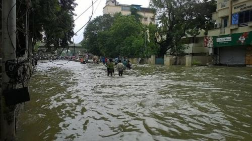 Urban flooding may increase if wetlands not protected, says CSE