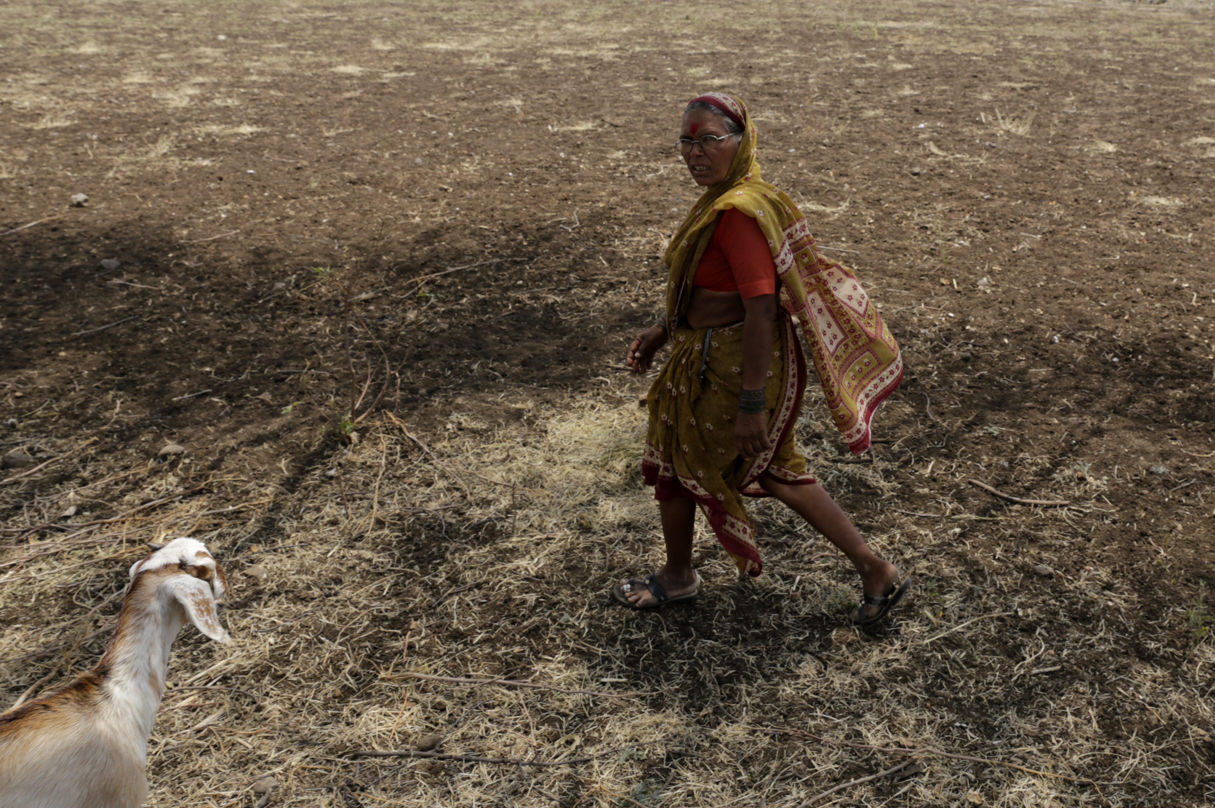 Marathwada in the grip of drought-like situation