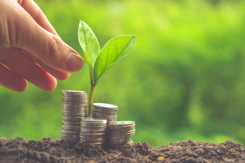 Green bonds, banks can boost India's clean energy market