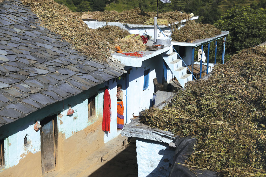 Bitgaon