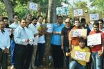 Coconuts: Goa's trees or grass?