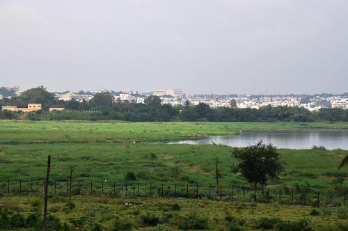 NGT halts construction on wetland between Bengaluru lakes