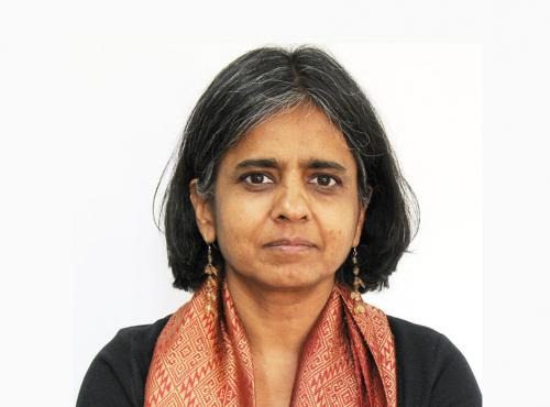 Sunita Narain highlights hits and misses of Paris climate deal