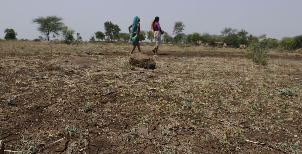 40% of India's districts face rain deficit