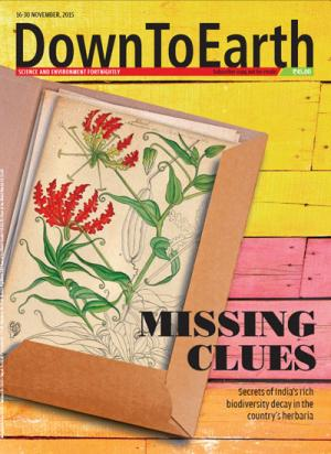 Missing Clues