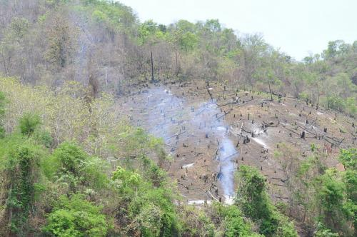 Brazil forest fire threatens local tribe