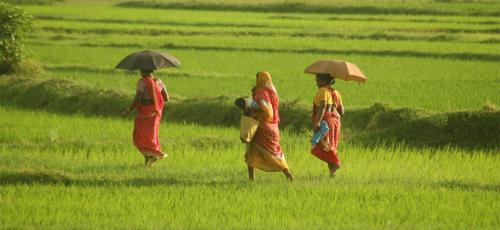 Why we should worry about 8% deficit rainfall in July