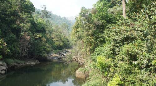 Kerala is marking only protected forests as ecologically sensitive area