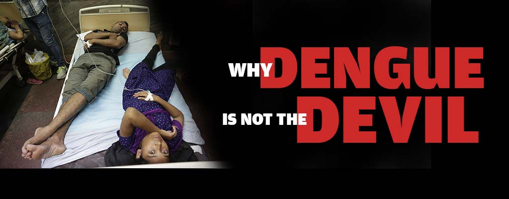 Why dengue is not the devil