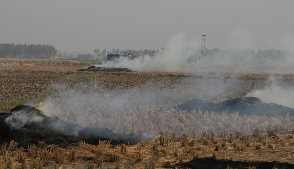 Burning of paddy stubble at Panipat in Haryana. Most farmers prepare their fields for sowing wheat by burning down the crop residues. This is a bad practice as it leads to severe air pollution