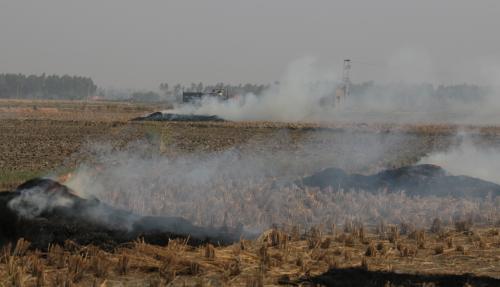 Paddy fields burning: Smog shrouds national capital
