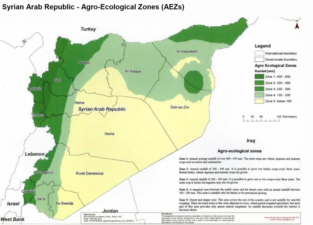 After last year's drought, food production in Syria sees a boost this year