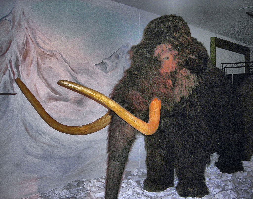 Ice Age heat waves might have killed mammoths, says study