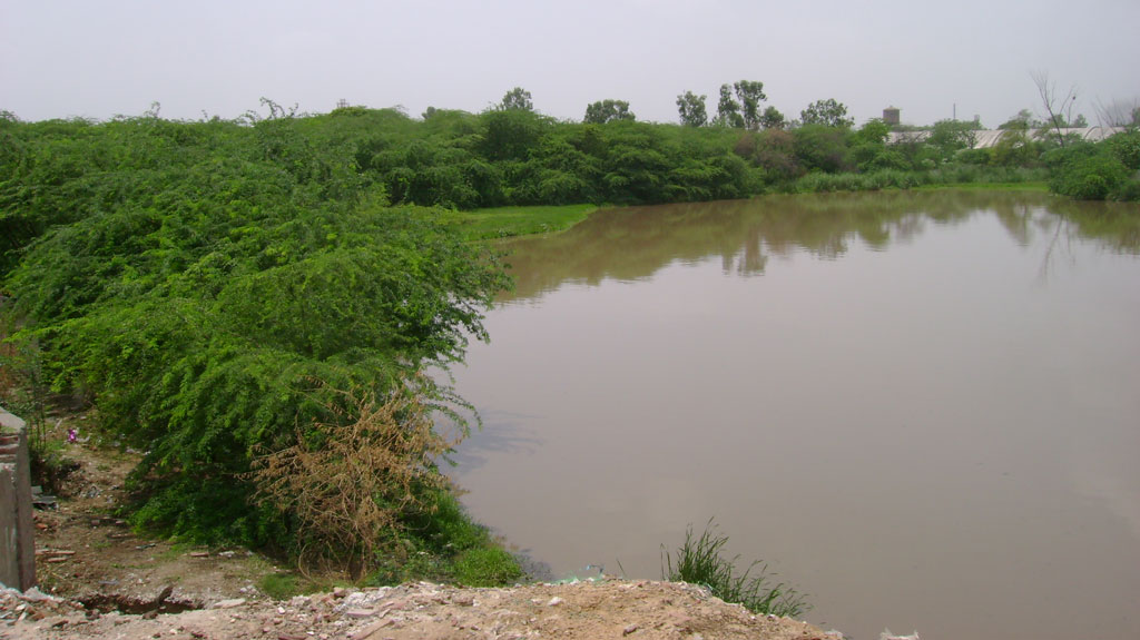 Ghaziabad is ignoring its waterbodies despite court rulings