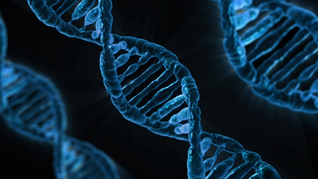Three scientists share Nobel for Chemistry for research on DNA repair
