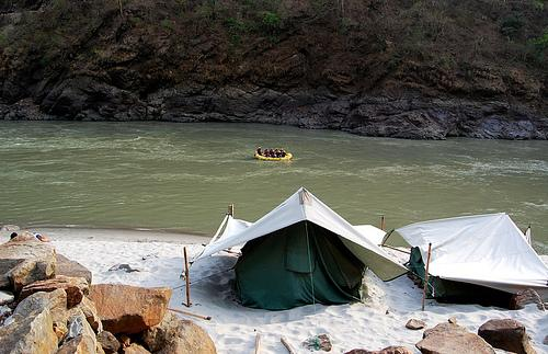 NGT bans camping activity in Rishikesh