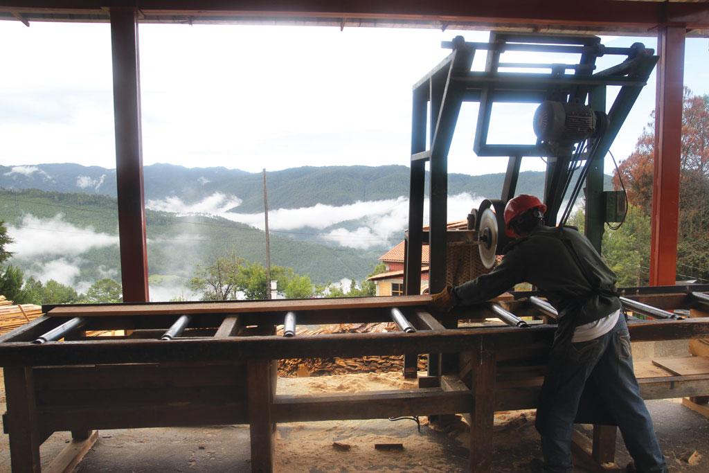 A sawmill at La Trinidad village situated on the Sierra Juarez mountain range of Mexico (Photos: Kumar Sambhav Shrivastava)