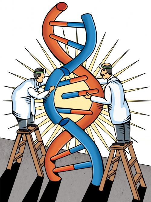 DNA at play