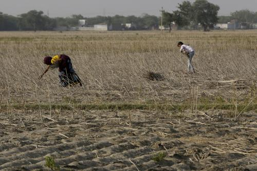 Unseasonal rainfall damages Rabi crops for seventh consecutive season
