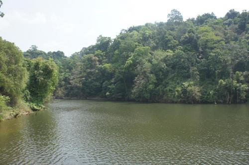 Maharashtra proposes to reduce eco-sensitive areas to one-third