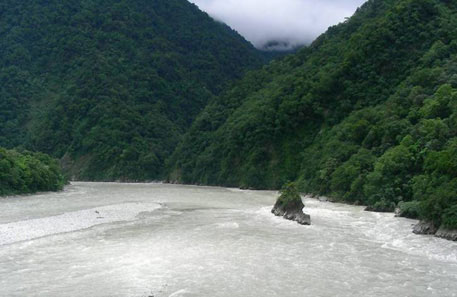 Assam not a necessary party to hydel power development in Arunachal, says green tribunal