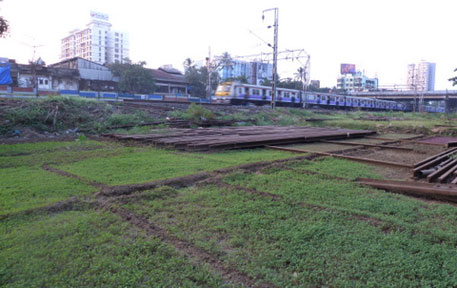 Mumbai's urban railway farms