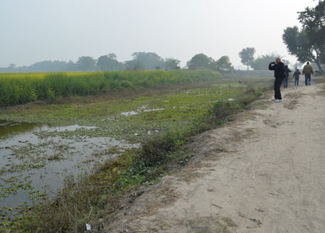 The choked inlet channel of the Kanwar lake that connects it to Gandak river (photo courtesy Ashok Ghosh, professor at Anugrah Narayan College in Patna)