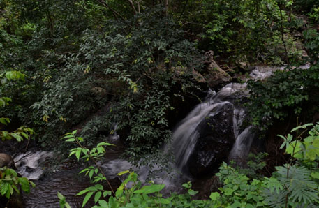 One of the over 100 perennial streams that originate from the Niyamgiri hill range