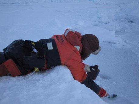 A scientist studies the nature of ice (Photo: Anja Rösel/Norwegian Polar Institute)