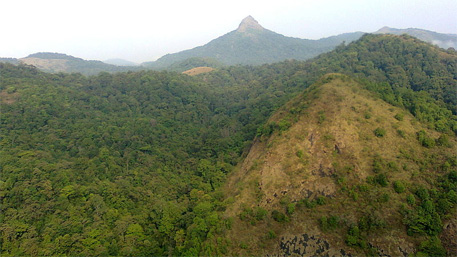 Western Ghats conservation: Kerala panel seeks dilution of Kasturirangan report, stirs controversy