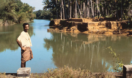 Wetlands in Kerala are disappearing fast after being reclaimed for industrial and residential projects