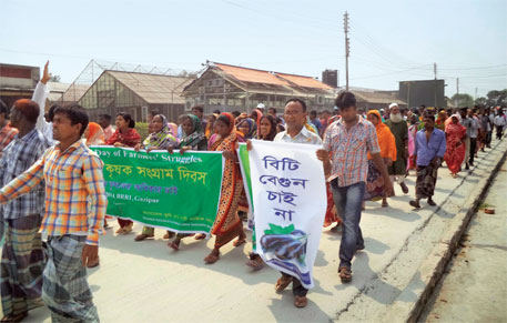 Farmers take out a rally in Gazipur protesting Bt brinjal