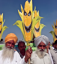 Activists oppose the genetically modified technology