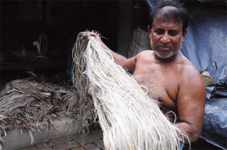 Farmers are moving away from jute despite heavy demand for gunny bags