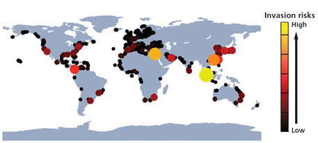 The colour and size of the dots show the total invasion risk of a seaport