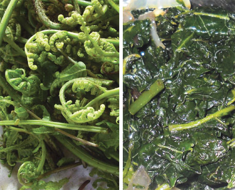 (Left) Mogurjabba fronds; steamed