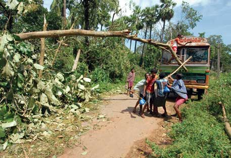 In Andhra Pradesh, communities took the initiative to clear trees blocking roads