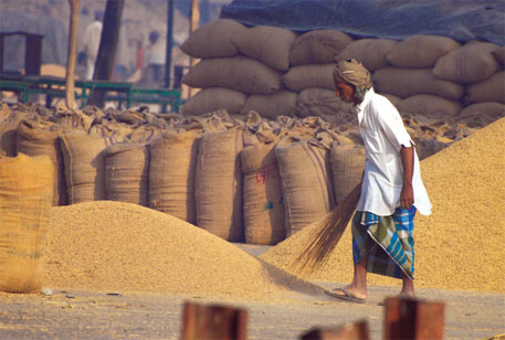 Bali accord relaxes the conditions imposed by WTO on agriculture subsidies