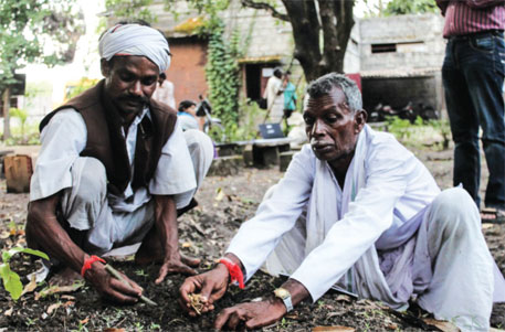 Bir Singh Padda (left) and another traditional healer plant herbs on the campus of C G Net Swara in Bhopal