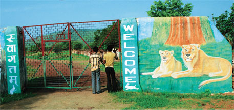 Gir lions get a second home