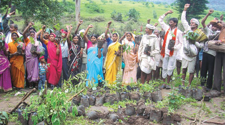 Tribals of Korku village in Chicholi tehsil take pledge to restore greenery. People worship plants and tools by performing traditional rituals